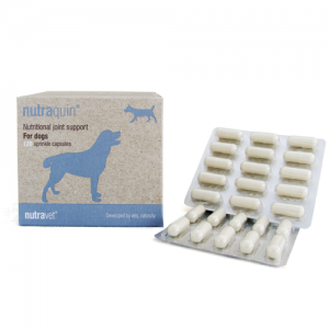 Nutraquin for dogs
